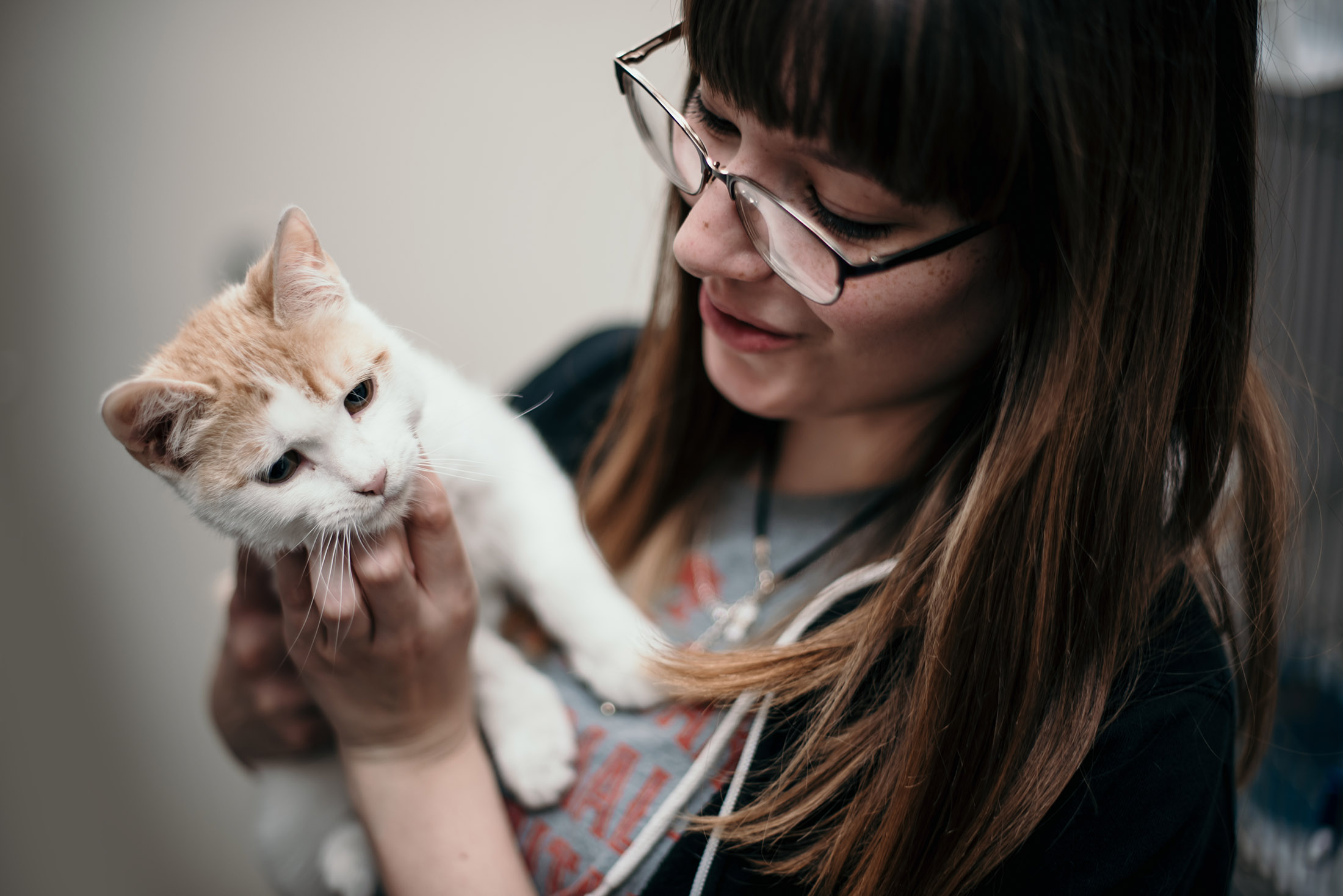 Best of Lubbock Animal Hospital Cat Veterinarian