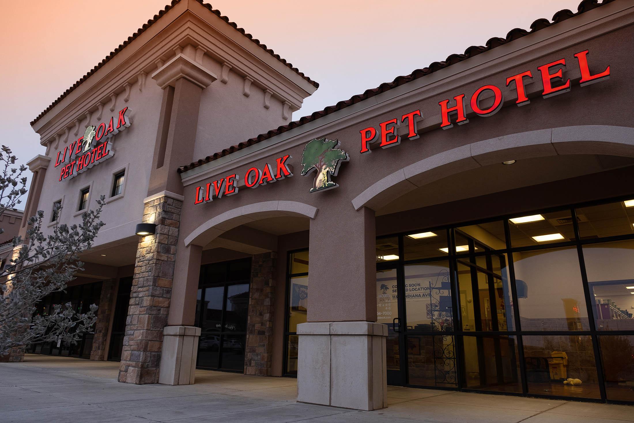 Pet Hotel In Lubbock Tx Live Oak Animal Hospital